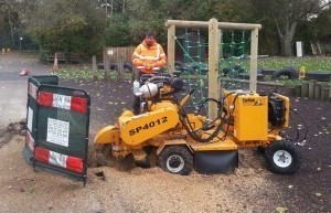 Stump Removal Leeds