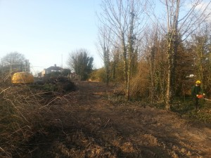 Tree Clearance Leeds Tree Clearance Yorkshire