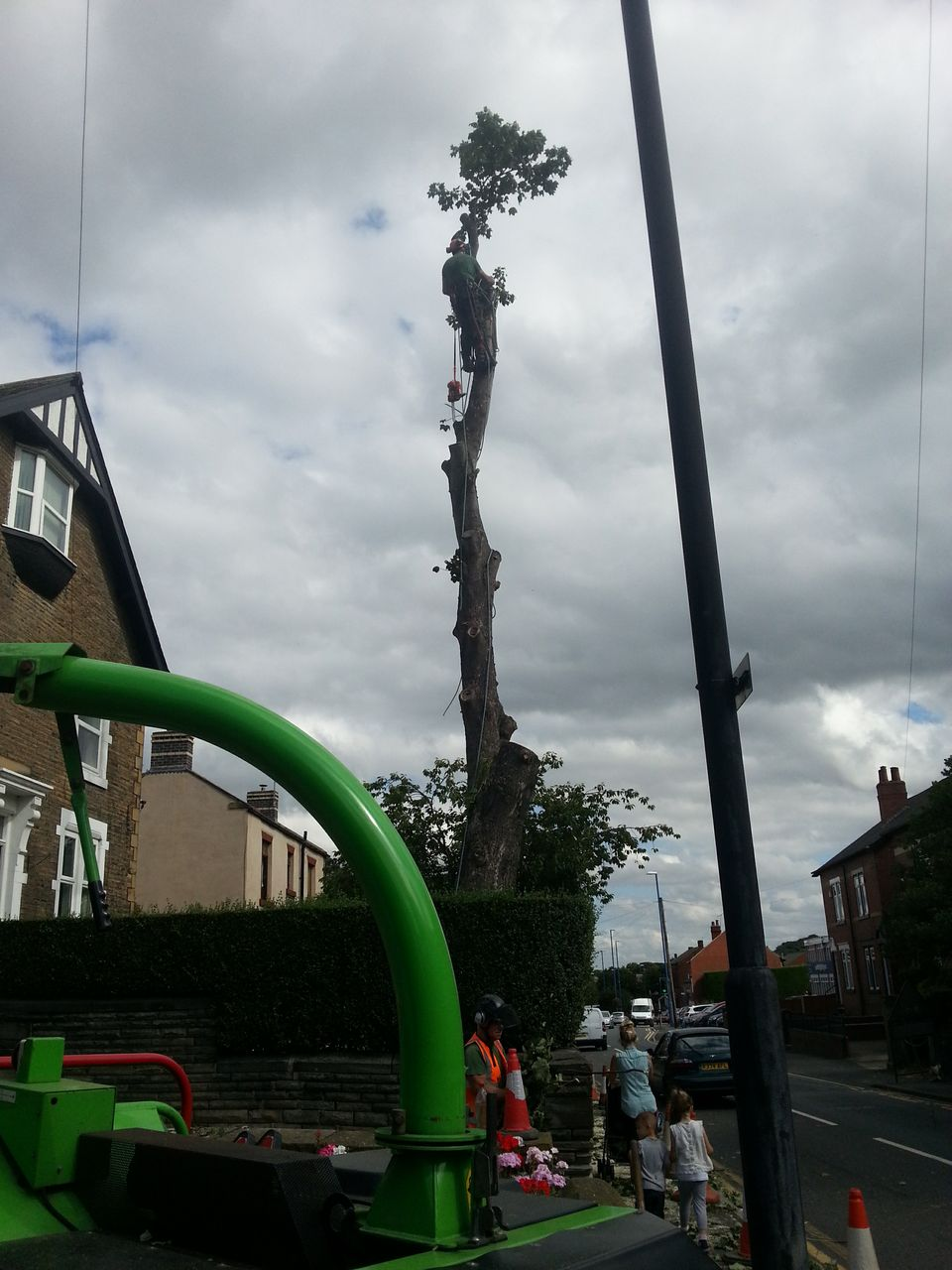 Big Tree Removal Leeds,Tree Dismantle Leeds