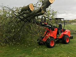 Leeds Tree Surgeon Services