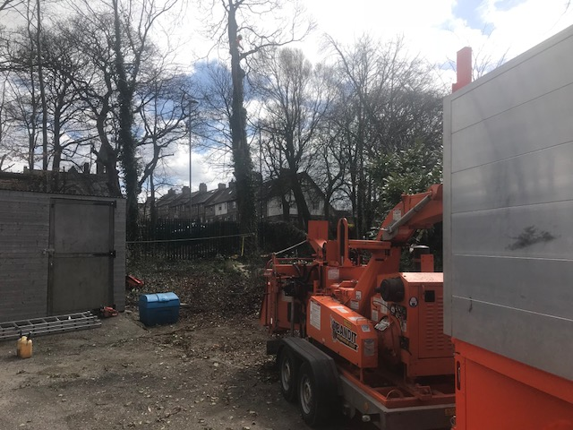 Leeds tree surgeon with bandit wood chipper