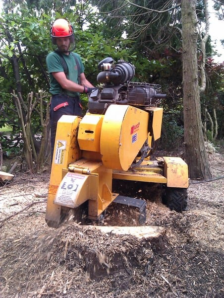 Stump Removal Leeds